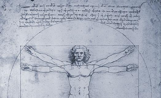 Zeichnung von Leonardo da Vinci monochrom